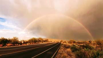 Social Harmony Rainbow